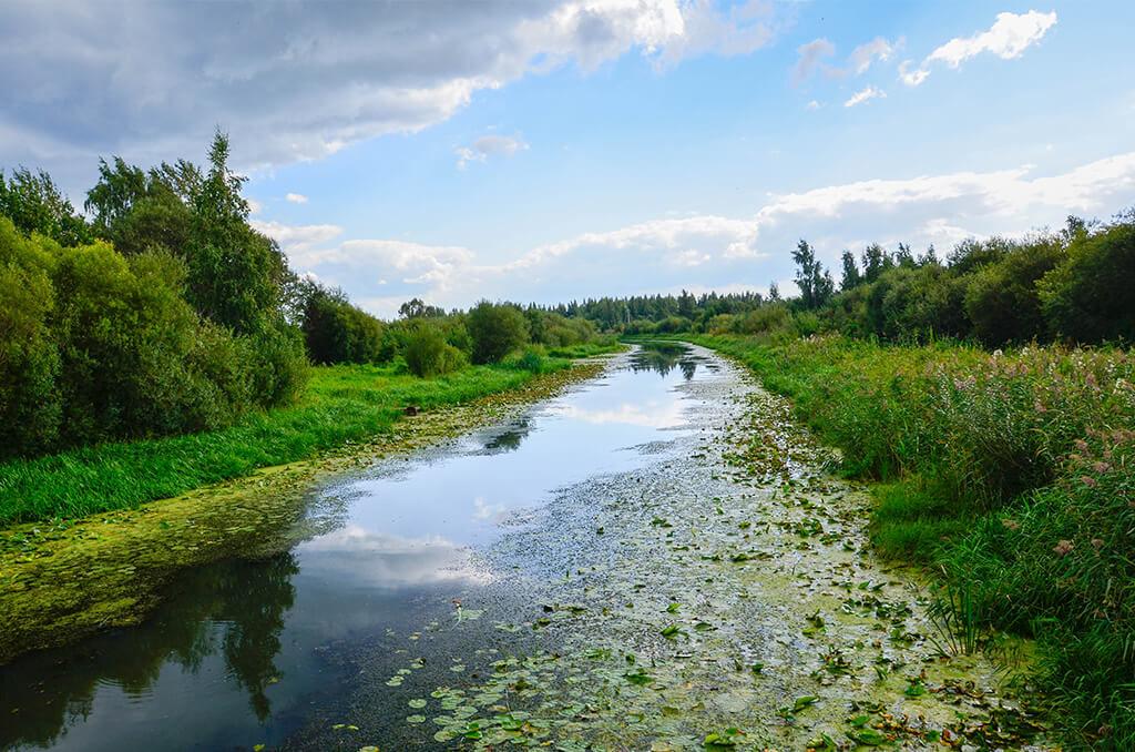 красивая речка